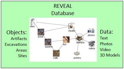 REVEAL Database